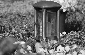 Impressionen vom Waltroper Friedhof. Foto: Ertmer 11.04.2011