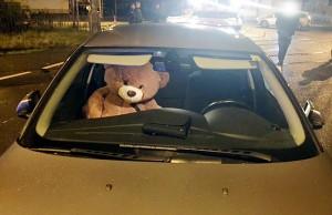Der vorschriftsmäßige angeschnallte Teddybär blieb beim Unfall ebenso wie der Fahrer unverletzt. Foto: Polizei Trier