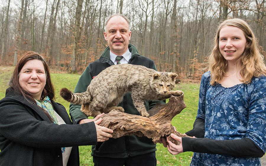 Partner bei der Wildkatzen-Inventur: Sabine Yacoub, Gundolf Bartmann und Annika Tiesmeyer. Foto: Rolf Lorig