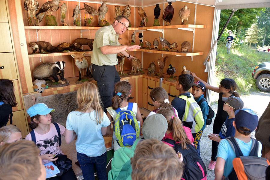Wenn Peter Neukirch den Kindern seine Sammlung mit ausgestopften Waldbewohnern zeigt, ist ihm die ungeteilte Aufmerksamkeit gewiss. Foto: Rolf Lorig