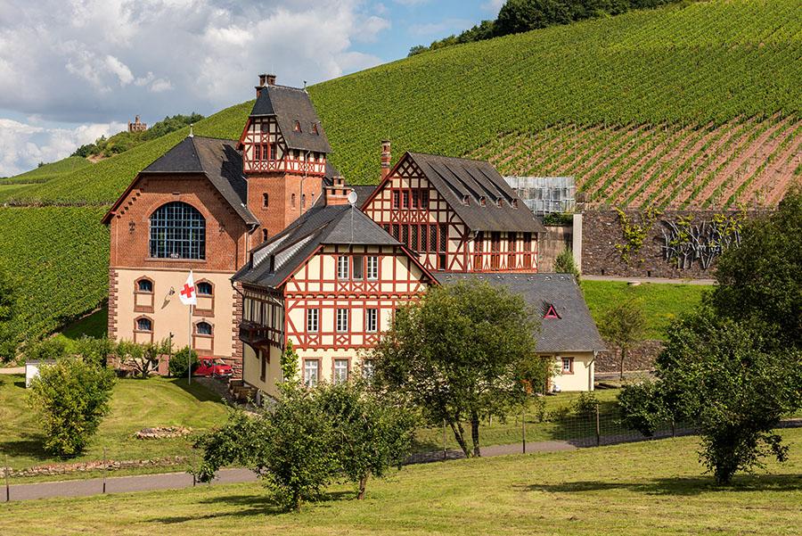 Das Gut Avelsbach mit der Hungerburg im Hintergrund. Fotos: Rolf Lorig