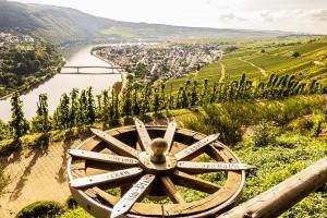 Weinwanderung auf der Mehringer Höhe. Foto: Rolf Lorig